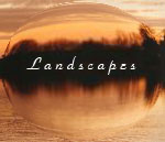 Visit the Landscapes-art Website