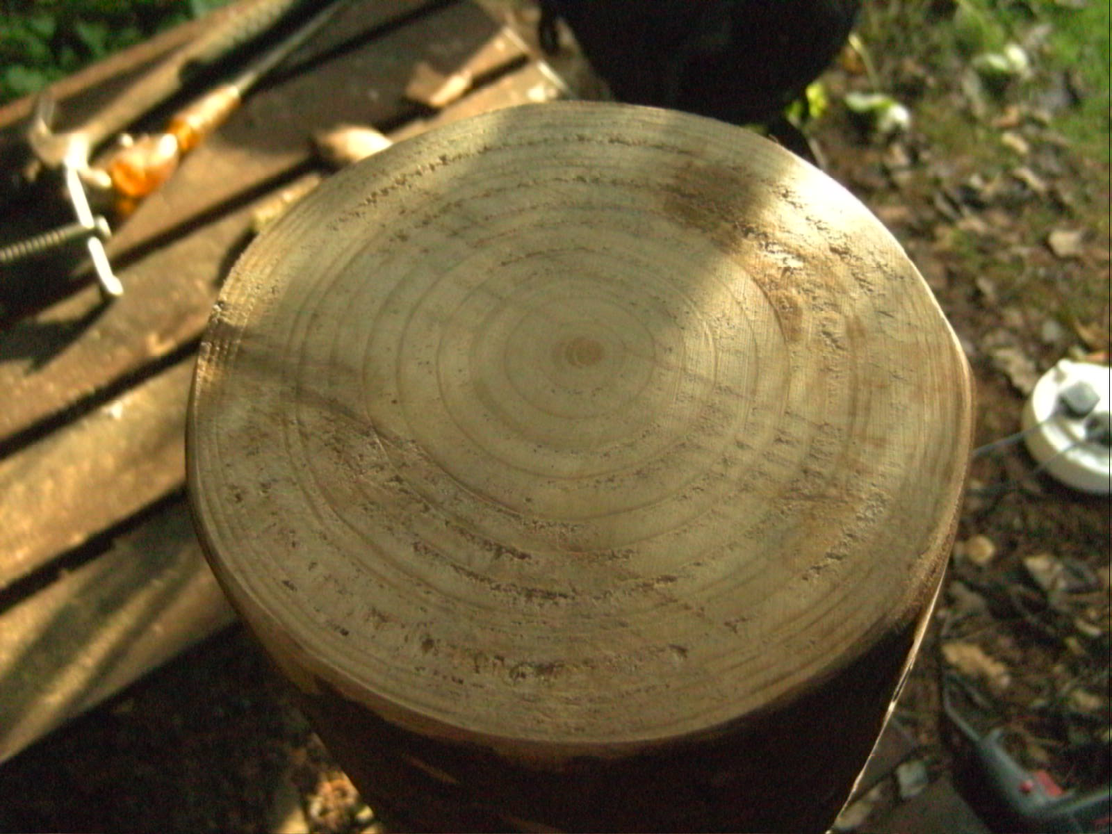 Sanding the tree ring logs